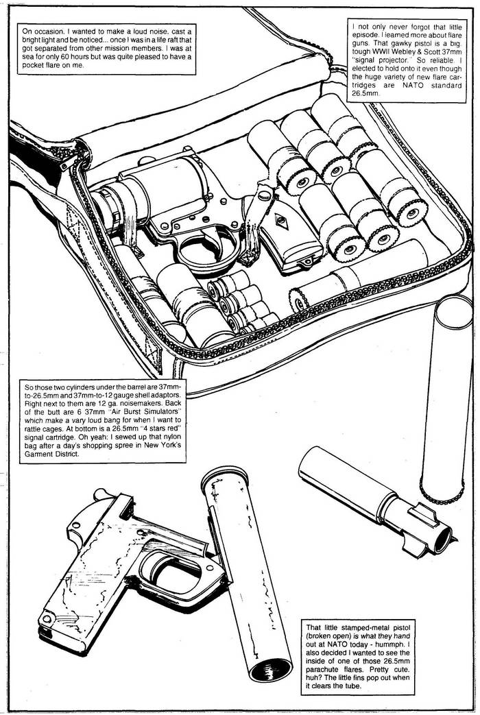 Eliot R Brown » Blog Archive » Flare Guns – Page 31